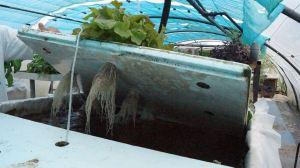 Unité Végétale : Système panneau flottant