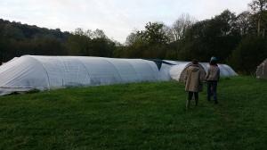 Eco-domaine de Bouquetot (14)