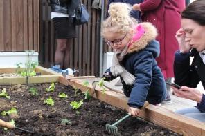 Atelier jardinage Ombelles 27-03-18 (17)