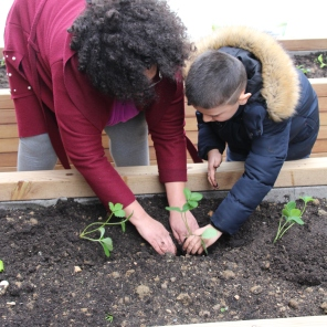 Atelier jardinage Ombelles 27-03-18 (25)
